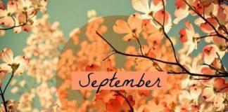 Tử vi tháng 9/2018 của tuổi Tý, Sửu, Dần, Mão chi tiết nhất