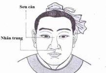 Dự đoán tính cách, vận mệnh của người có tướng mũi lân